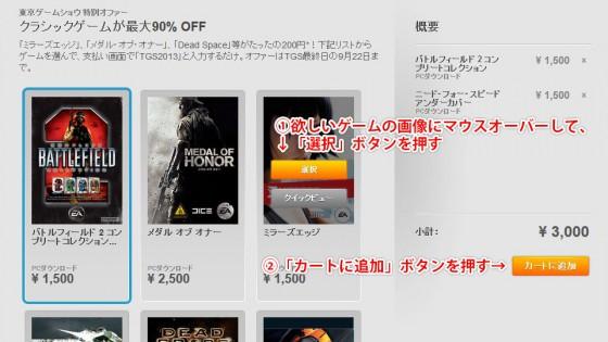 origin_tgs2013_sale_02