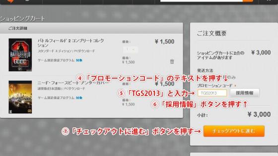 origin_tgs2013_sale_04